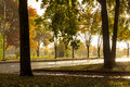 Rain and sun at fall on street Royalty Free Stock Images