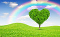 Rainbow above spring landscape tree shape heart Stock Image