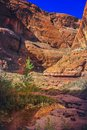 Rainbow Bridge National Monument, Utah Royalty Free Stock Photo