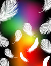 Rainbow color feather background Stock Photos