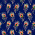 Rainbow colorful peacock bird feather seamless pattern background texture Royalty Free Stock Photo
