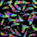 Rainbow Feather Royalty Free Stock Photography