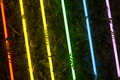 Rainbow of Fluorescent Light Tubes on Greenery Royalty Free Stock Photo