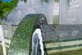 Rainbow in the fountain spray Royalty Free Stock Photo