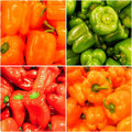 Rainbow of Hot Peppers Stock Photo