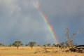 Rainbow landscape desert with a colorful and heavy rain clouds kalahari south africa Stock Photo
