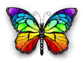 Rainbow monarch butterfly