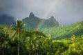 Rainbow on Moorea island jungle and mountains landscape Royalty Free Stock Photo