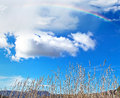 Rainbow over dry grass colorful and blue sky Stock Photography