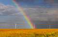 Rainbow over the field beautiful a of cereals with wind turbines in distance Stock Photo