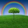 Rainbow tree Royalty Free Stock Image