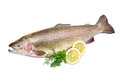 Rainbow trout with fresh herbs isolated on white background Stock Image