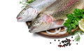 Rainbow trout with fresh herbs isolated on white background Royalty Free Stock Photos