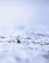 Raindrop Stock Image