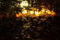 Raindrops on glass sadness sorrow gloom autumn a sweaty Stock Image