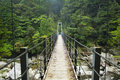 Rainforest bridge in yakusugi land on on yakushima japan a suspension crossing a river lush the southern island of 屋久島 Stock Photo