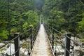 Rainforest bridge in yakusugi land on on yakushima japan a suspension crossing a river lush the southern island of 屋久島 Stock Photo