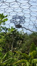 Rainforest of Eden Project in St. Austell Cornwall Royalty Free Stock Photo