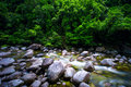 Rainforest river flowing slowly over rocks and boulders Stock Images