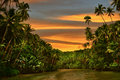 Rainforest River Sunset Stock Photos