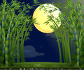 A rainforest under the bright moon illustration of Stock Photos