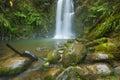 Rainforest waterfalls, Beauchamp Falls, Australia Royalty Free Stock Photo