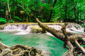 Rainforests waterfall at erawan waterfall national park thailan kanjanaburi thailand Royalty Free Stock Image