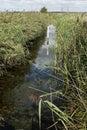 Rainham marshes rspb reserve essex september Stock Images