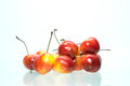 Rainier cherries on white background Royalty Free Stock Photo