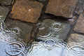 Raining on cobblestone pavement Royalty Free Stock Photography
