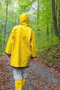 Rainy day young woman in a yellow raincoat walkin in forest Royalty Free Stock Image