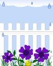 Rainy garden Royalty Free Stock Photo