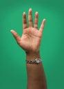 Raised Female Hand Royalty Free Stock Photo