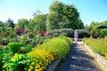 Raised flower beds in Kitchen garden Royalty Free Stock Photo
