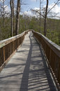 Raised wooden boardwalk Royalty Free Stock Image