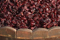 Raisins closeup shot horizontal background Royalty Free Stock Photography
