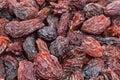 Raisins texture background. Stock Image