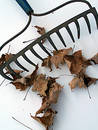 Rake Stock Photography