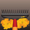 Rake and autumn leaves maple vector illustration Stock Image