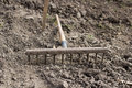 Rake on the ground metal lying a brown plowed soil Royalty Free Stock Photo