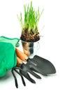 Rake shovel gloves steel pot with grass rubber green isolated on white Stock Photo
