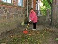Raking leaves senior woman work outdoor fallen Royalty Free Stock Photos