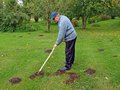 Raking molehills senior country farmer smooth by rake Royalty Free Stock Photography