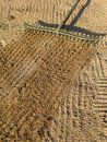 Raking sand with a golf bunker trap rake. Stock Image