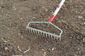 Raking soil for seed sowing rake head cultivating the the ground breaking up the large clumps to create a fine tilth to sow seeds Stock Photo