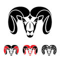 Ram animal