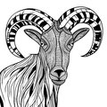 Ram head or mountain goat line art sheep vector animal illustration for t shirt sketch tattoo design Stock Photography