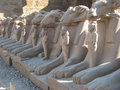 Ram headed sphinxes at Karnak Temple. Luxor. Stock Photos