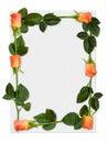 Rama 2 rose Obrazy Stock