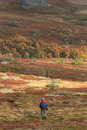 Rambler in the mountain hikers on moors autumn colors Royalty Free Stock Image